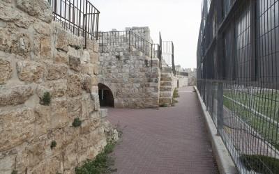Palestine_BurLuqLuq_TheCenter_2015_KayaneAntreassian_6145